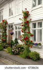 Traditional white wooden house in Bergen, Norway, with its beautiful flowers