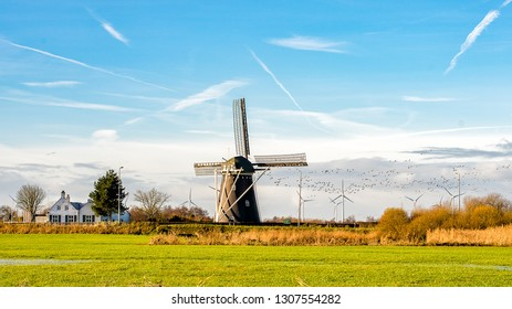 Traditional Windmill and Modern Wind Farm