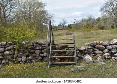 Traditional wooden stile crossing an old dry stone wall in spring season at the swedish island Oland