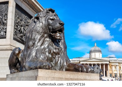 Trafalgar square lions at Nelson column, center of London, United Kingdom