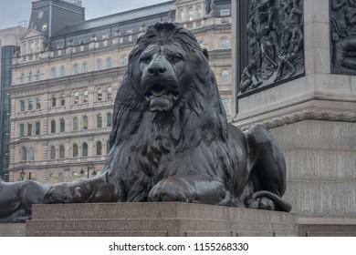 Trafalgar Square, London-September 8,2017: Statue of Lion on Trafalgar square on September 8, 2017 in London, United Kingdom