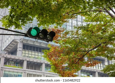 Traffic Light in green and building at the background