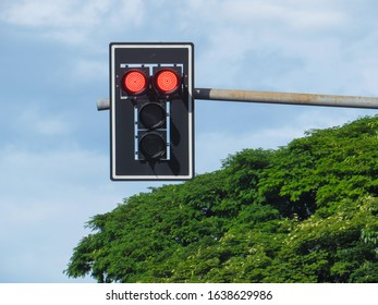 Traffic light with red light on, with blue sky and green tree