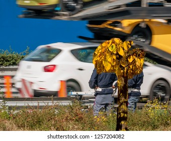 The traffic police check the speed of vehicles on the side of the highway with a speed camera