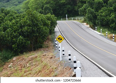 Traffic road sign warning up to hill steep climb (8%) , Paved road in the forest filled with trees on mountain in Thailand