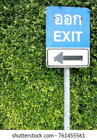 Traffic sign exit on tree background