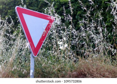 Traffic sign overgrown with weeds. Selective focus.