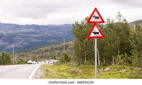 Traffic sign with reindeer and  moose along the road in Scandinavia