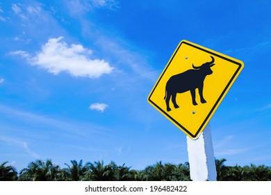 Traffic warning sign - buffalo cross road