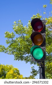 Trafic light with trees