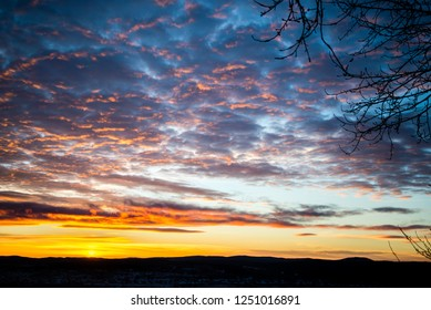 tragic sky, yellow-pink clouds, sunrise, bright colors, tree branches