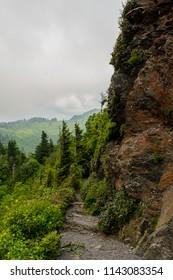 Trail Along Ledge to Charlies Bunion in the Smokies
