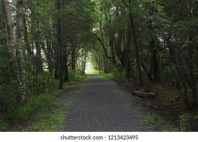 Trail at Amherst Point Bird Sanctuary, Nova Scotia