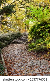 Trail in the autumn park. Fallen leaves on the steps and path. Stavanger. Norway. Scandinavia.