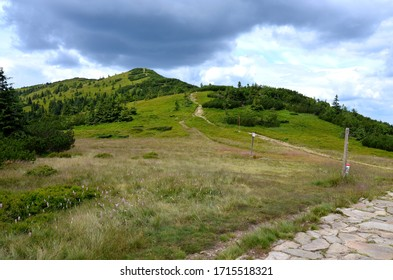The trail to Babia Gora - Diablak - the highest peak in the Zywiec Beskids.