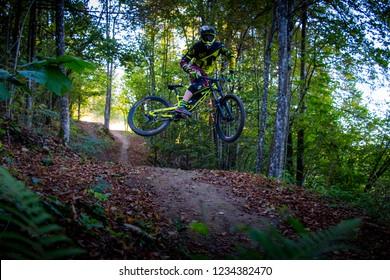 Trail Center Kocevje, Slovenija - October 2 2018: Mountain biker whip jumping the trail.