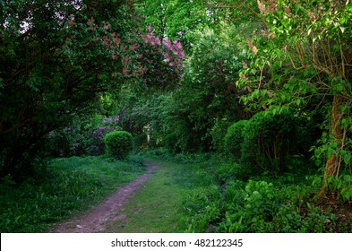 trail in the enchanting fairy tale, spring garden