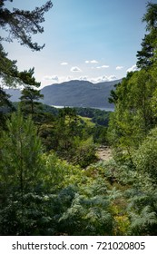 The trail to the Falls of Foyers with a small bit of Loch Ness Peaking out in the Scottish Highlands.