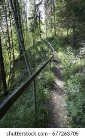 Trail in Forest with Railing.