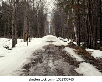 Trail in a forest 'up north' in the early spring - mixture of snow and mud. Taken in the Upper Peninsula, Michigan (USA) in mid-April. Road is used by snowmobiles in winter.
