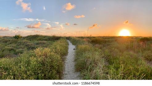Trail to hidden Florida beach at sunset.