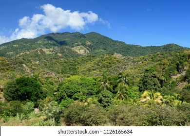 Trail for the highest peak of Cuba -  Pico Turquino in the mountains Sierra Maestra