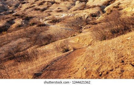 Trail leading across a burned hill side, California