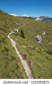 Trail leading to the village on  Velika planina (Big Pasture Plateau), Slovenia