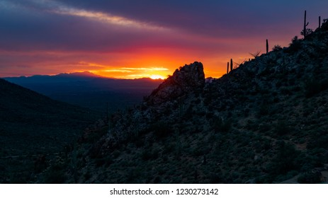 Trail leads up a hill covered in saguaro cactus, cholla cacti and ocotillo, to a rock where a beautiful sunset lights up the sky with orange, red lavender and purple colors. Sonoran Desert landscape.