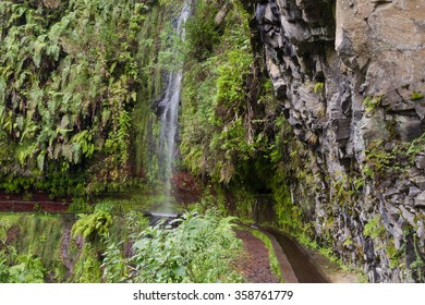 Trail at Levada Do Rei through an ancient laurel forest, Madeira, Portugal