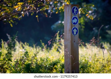 Trail markers at the Ireland Brook Conservation Area in East Brunswick, New Jersey.