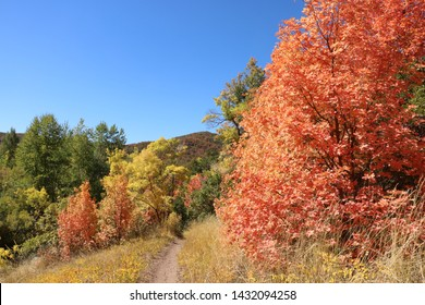 A trail meanders through the Wasatch mountain foothills in East Canyon near Salt Lake City, Utah