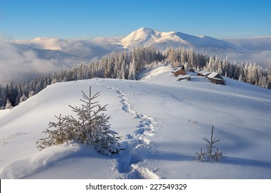 Trail to the mountain huts. Winter is in a fabulous location. Mountains Carpathians, Ukraine, Europe. Christmas landscape