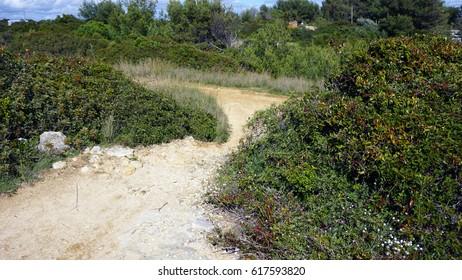 trail near marinha on the algarve coast