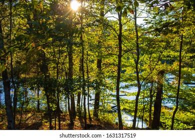 Trail near New Albany Indiana
