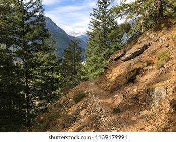 Trail in North Cascades National Park, Washington