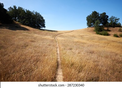 Trail on the hill