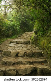 The trail on the way to the Inca Bridge in Machu Pichhu