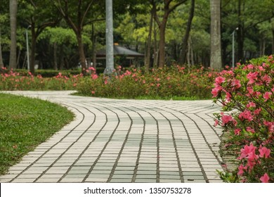 Trail in the Park. Spring scenery in Asia.