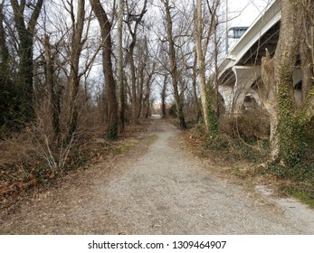 trail or path in the woods with Wilson bridge in Virginia