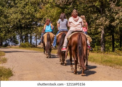 Trail road - Backs of a row of women on horses walking along a dirt road with trees in the background