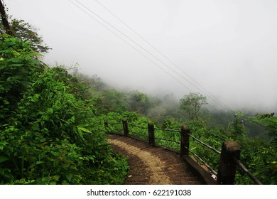 Trail / Route / Steps to Double Decker Root Bridge over Umshiang river, Cherrapunjee, Meghalaya, India