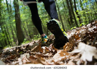 Trail Running in Appalachia