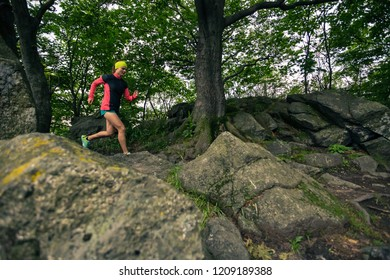Trail running girl in green forest. Endurance sport training. Female trail runner cross country running. Sport and fitness concept outdoors in nature.