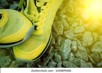 Trail running shoes in a park, close-up sneakers. Running shoes before practice. Sport active lifestyle concept. Horizontal photo banner for website header design. Sun beam lights.