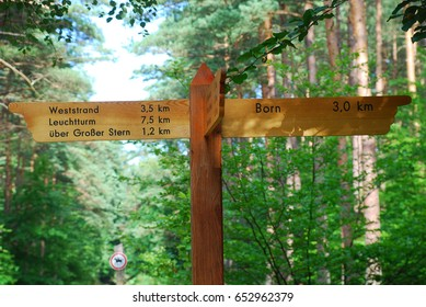 trail sign in the forest of Born (Darss, Germany)