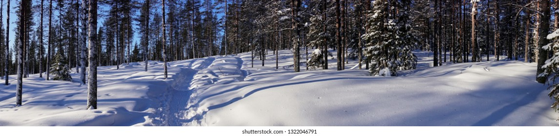 Trail in the snowy forest panorama in Lapland, Finland.