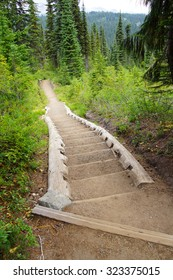 Trail with steps near Pinnacle Pass, Mount Rainier National Park