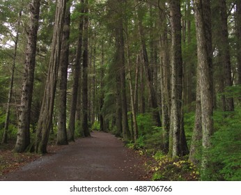 Trail through the forest at Sitka National Historical Park, Sitka, Alaska