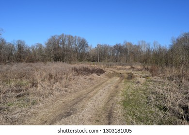 Trail through meadow in Lee Tartt Nature Preserve in Grenada Mississippi